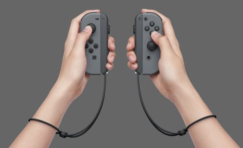 Joy-Con Strap Nintendo Switch