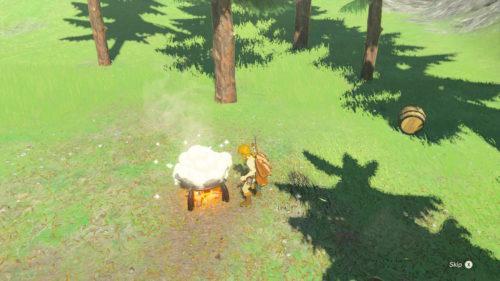 Legend of Zelda Breath of The Wild Gotowanie