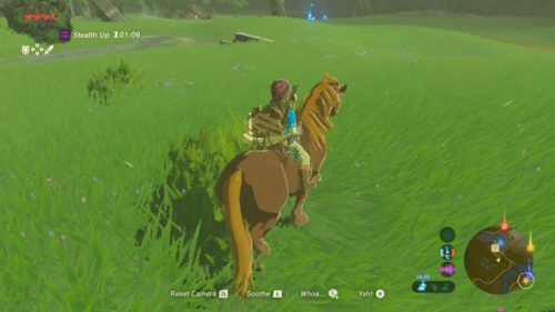 The Legend of Zelda Breath of The Wild Koń