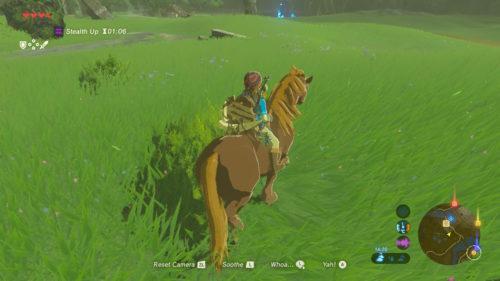 The Legend of Zelda Breath of The Wild Koń