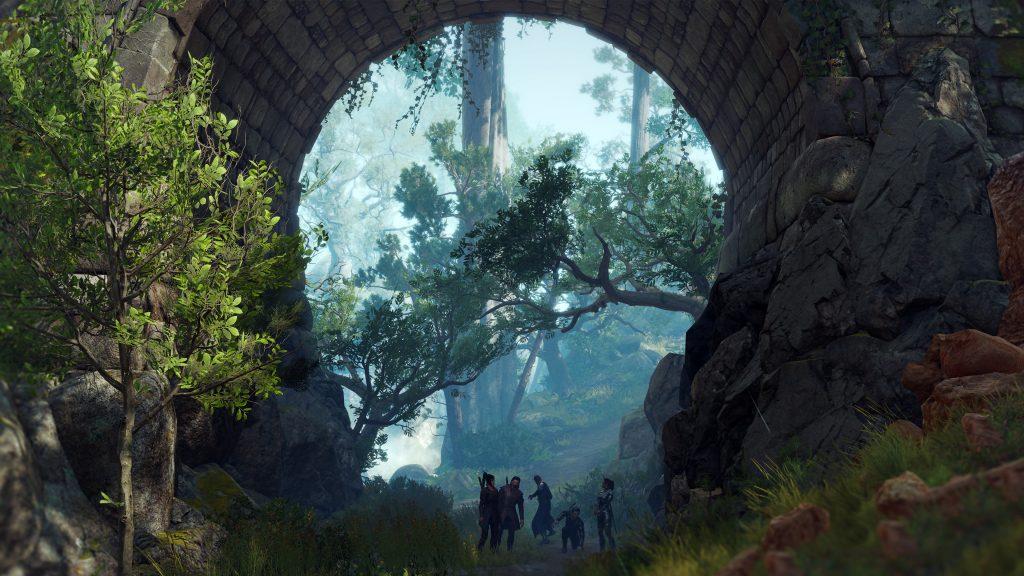 Baldur's Gate 3 łady widok